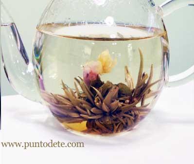 Flor de té blanco