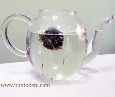 tetera de cristal con flor de té